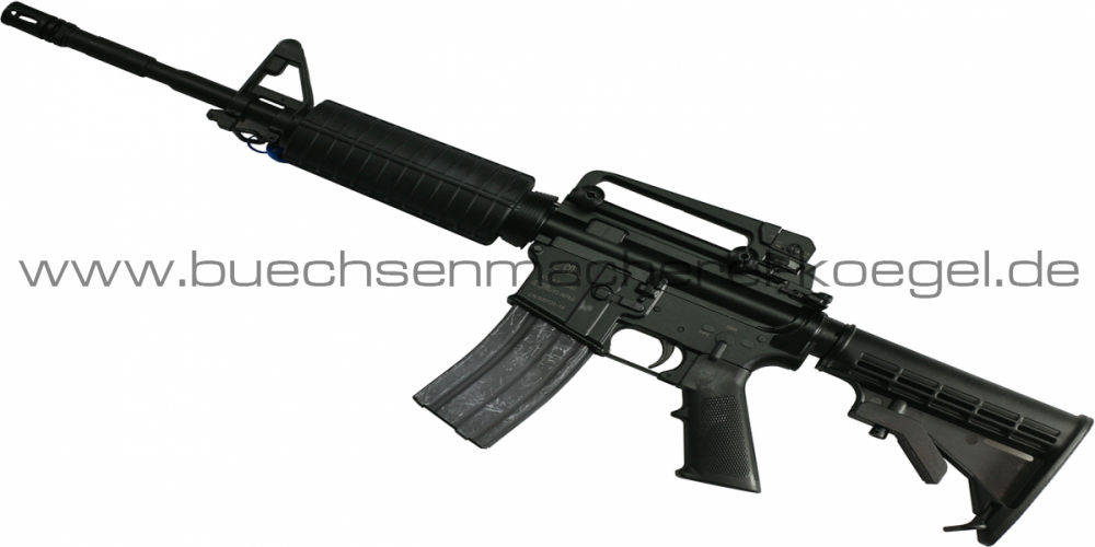 AR15 M4 Carbine Salut
